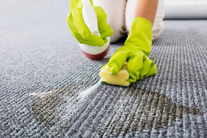 Getting Rid Of Reappearing Carpet Spots In Temecula
