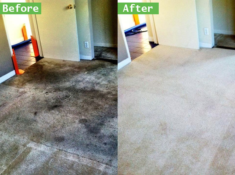 Carpet Cleaners in Temecula Ca